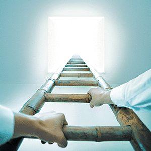 Secretul urcarii pe scara ierarhica: Nu exista nicio scara