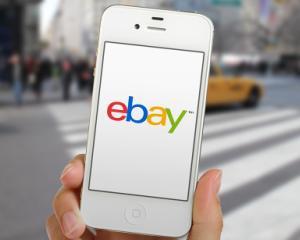 Statul care isi redreseaza economia prin afaceri pe eBay