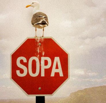 SOPA s-a mutat in Rusia