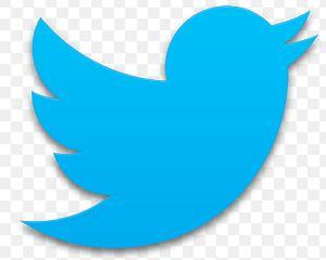 Twitter a cumparat aplicatia pentru telefoane inteligente Cover