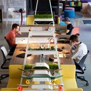 5 birouri pentru care vei fi invidiat