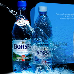 Borsec, primul brand romanesc care cucereste topul Superbrands