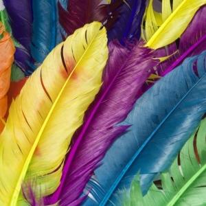 Cum ne influenteaza culorile viata