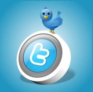 Cum sa aduci profit companiei tale cu ajutorul Twitter-ului