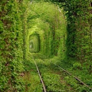 Cele mai neobisnuite tuneluri din lume