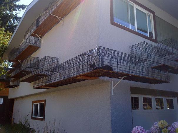 balcon pentru pisici