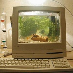 Cateva modalitati prin care vechiul calculator poate redeveni util