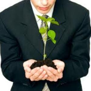 Cum sa-ti transformi ideea intr-o afacere profitabila