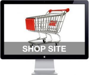 S-a lansat eMagazin, primul serviciu de comert electronic in cloud
